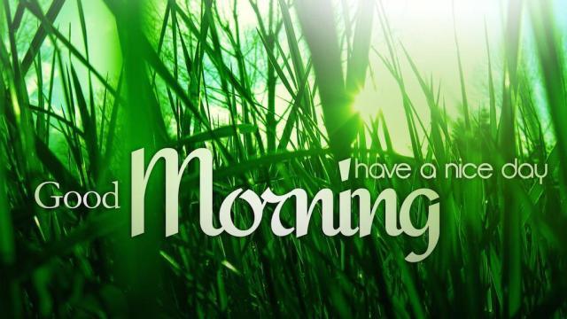 Good morning sayings 3