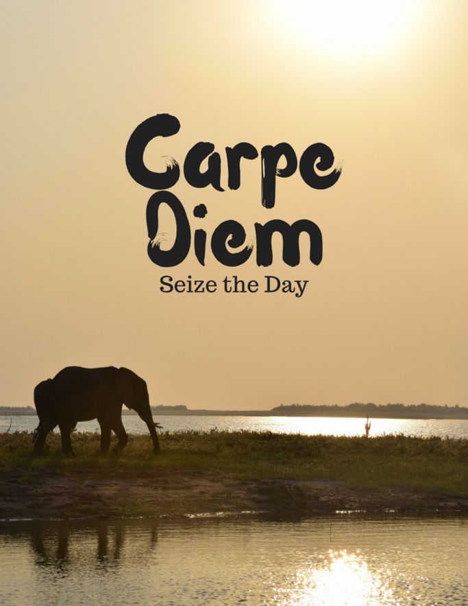 seize the day good morning