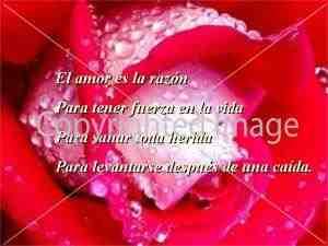 Poemas de Amor muy Románticos (2)
