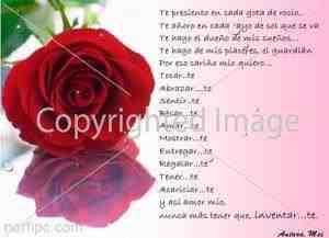 Poemas de amor para mi novia anónimos (1)