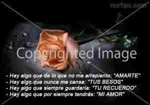 poemas de amor para mi novia bella (1)