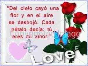 poemas de amor para mi novia bella (2)