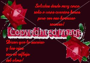 poemas de amor para mi novia de buenas dias (1)