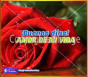 Poemas de Amor para mi Novia de Buenos Días (2)