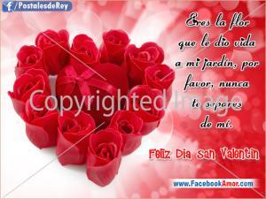 Poemas de Amor para mi Novia en San Valentín (2)