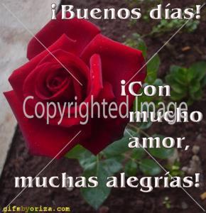 Poemas de Amor y Buenos Días para mi Novia (1)